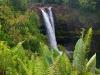 hawaii-2011-285