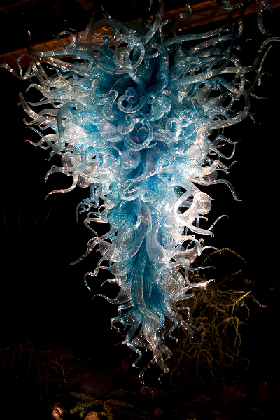 chihuly-at-night-2