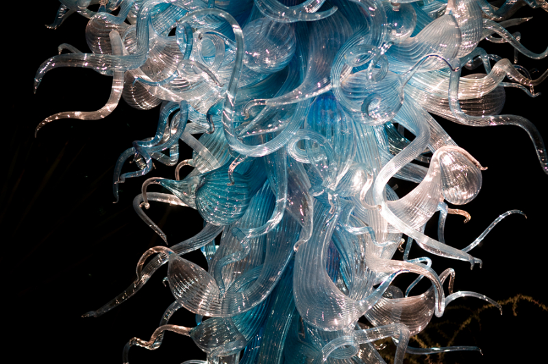 chihuly-at-night-4