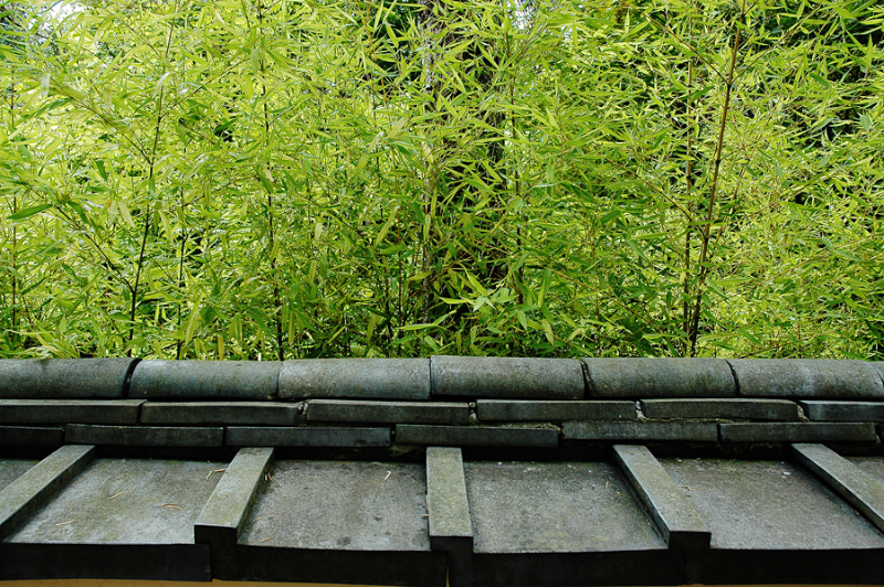 roof-and-green-bamboo-edited