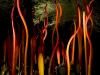 chihuly-at-night-5