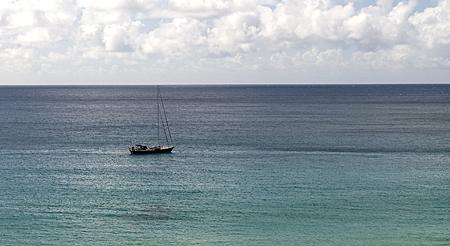 waimea-beach-1-cropped-2