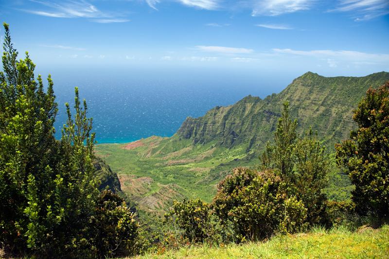 hawaii-2012-214