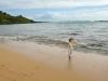 hawaii-2012-237