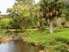 hawaii-2012-250