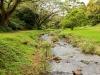 hawaii-2012-251