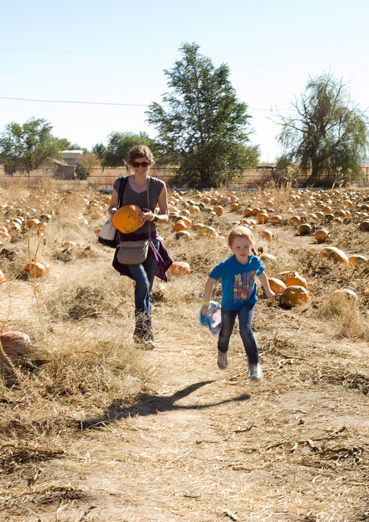 freeman pumpkin patch 17