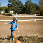 freeman pumpkin patch 19