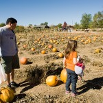 freeman pumpkin patch 36