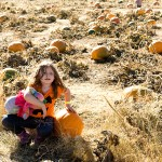 freeman pumpkin patch 4