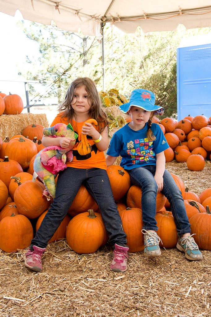 freeman pumpkin patch 41