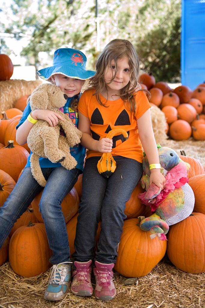 freeman pumpkin patch 42
