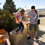 freeman pumpkin patch 46