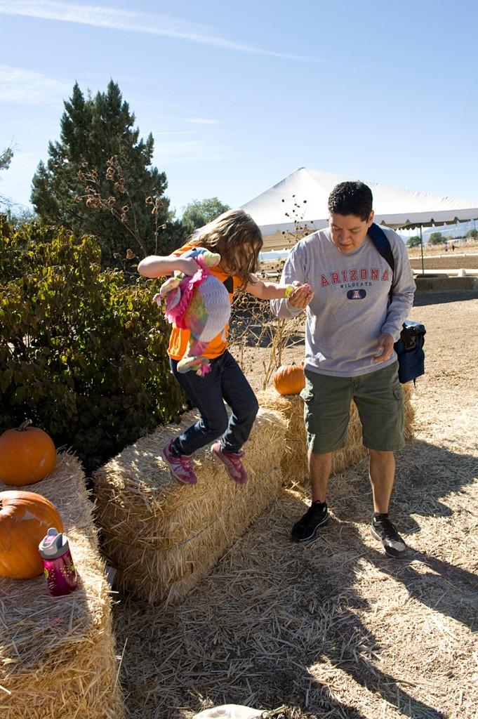 freeman pumpkin patch 46