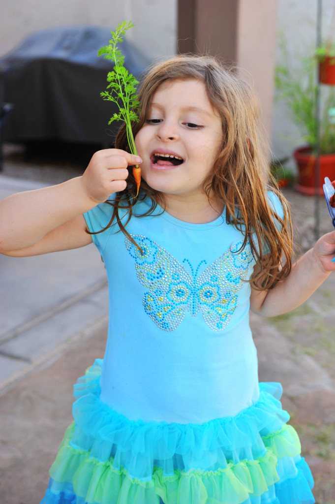 isa-carrot-in-garden-1