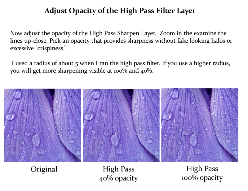 high pass document page 4 web