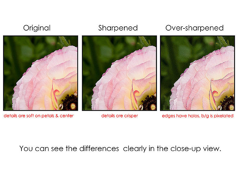 sharpening example page 3 web