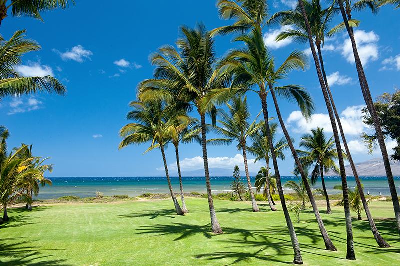 hawaii 2013 59