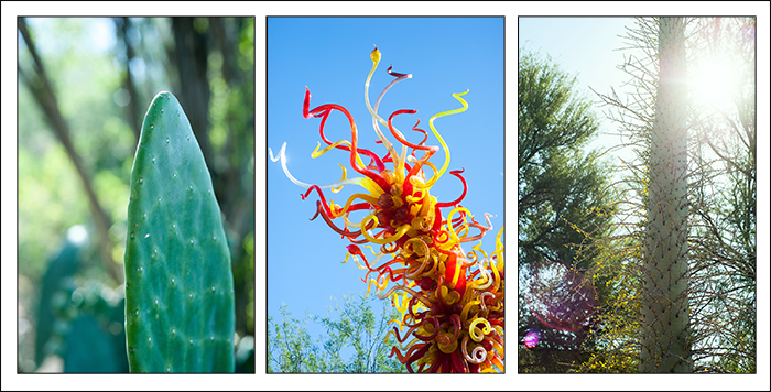 chihuly montage